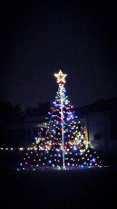 BB Christmas Tree_edited