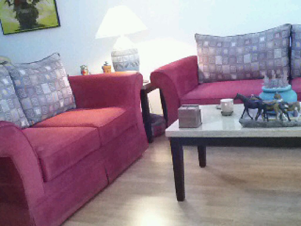 Sofa And Matching Love Seat For Sale Boundbrook Condominiums